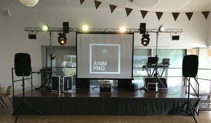 Anim Pro DJ 1