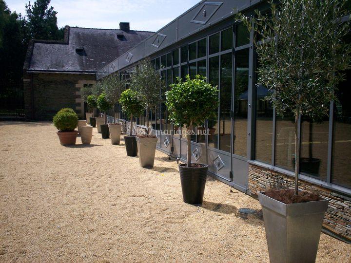 Location plantes