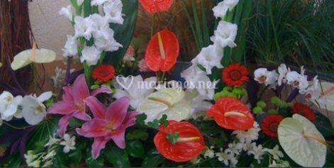 Gerbe de fleurs exotiques