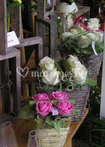 Dallure classique ou décorative