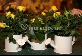 Mini arrosoir de plante suivant les saisons