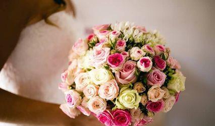 Stessy Fleurs