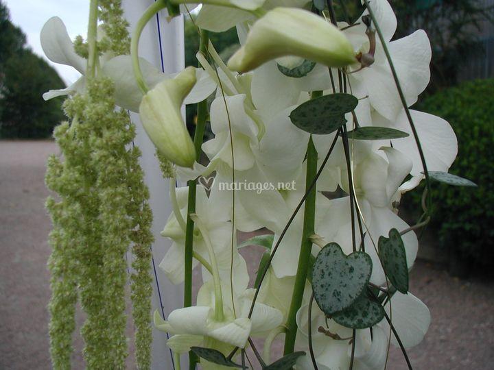 Bouquet fin blanc