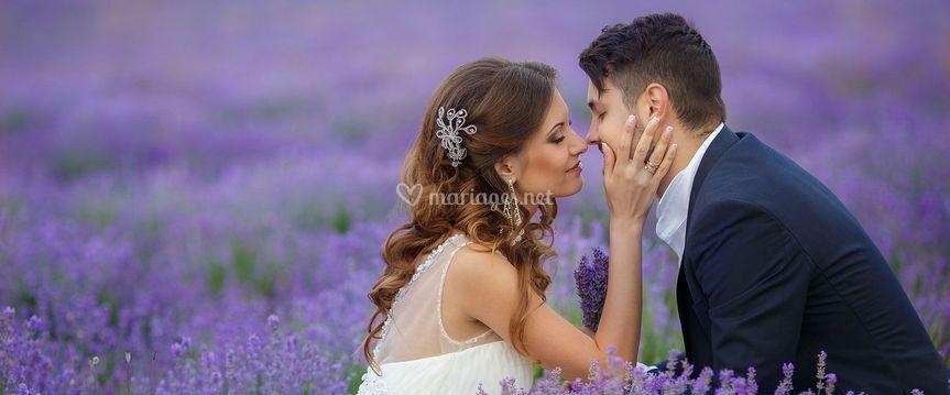 Aimant la Provence