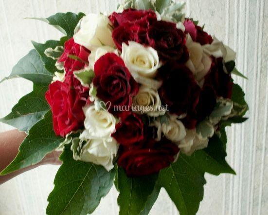 Une combinaison de roses
