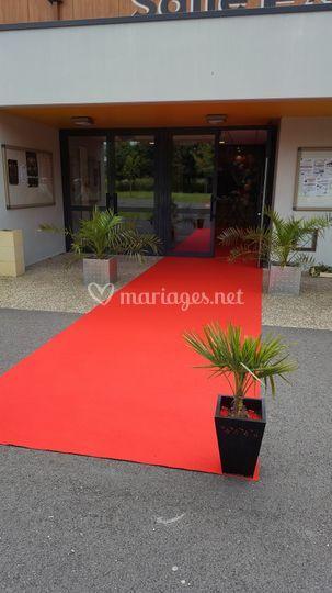 Location tapis et moquettes