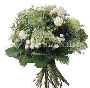 Bouquet colombe