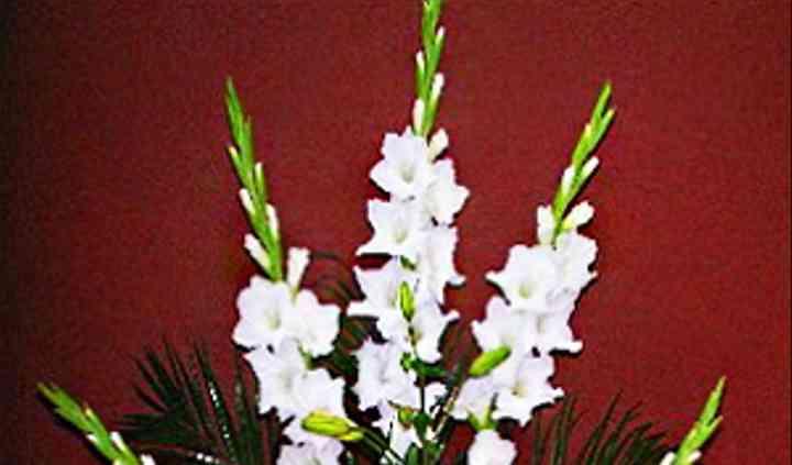 Arrangement de fleurs blanches