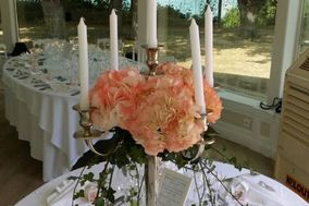 Clotilde Fleurs