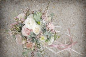 Pleione design floral