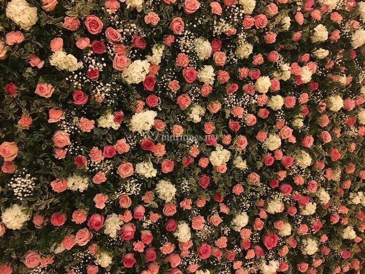 Mur de fleurs Intercontinental