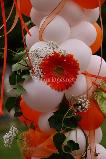 Ballons & Fleurs naturelles