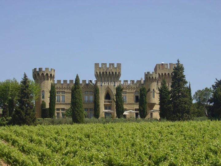 Le château dans les vignes