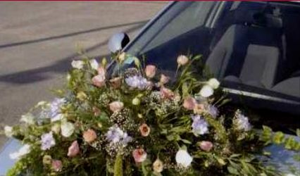 Plant Center Fleurs
