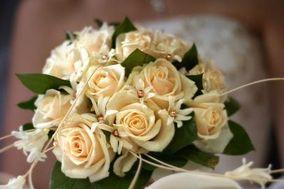 Murmure de Fleurs