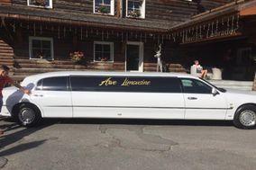 Arve Limousine