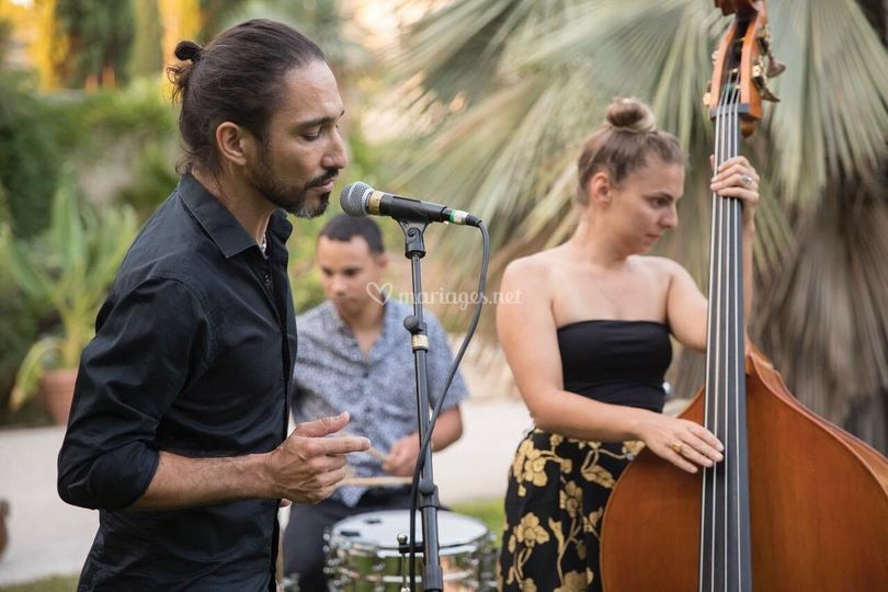 Trio Jazz (Vins d'honneur)