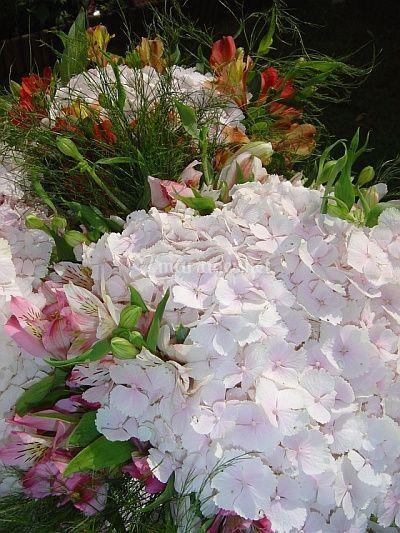 Bouquets 2006