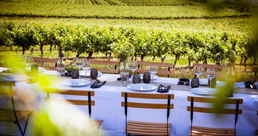 Déjeuner dans les vignes