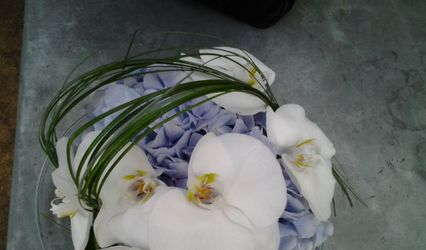 Floralys 1