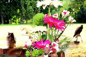 Fleurs en vadrouille