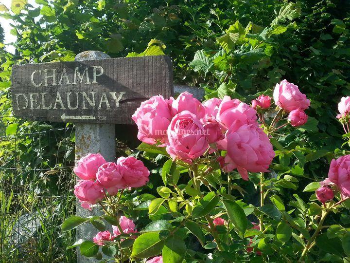 Entrée Domaine Champ Delaunay