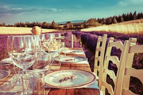 Verveine en Provence