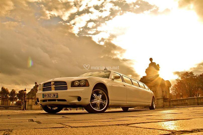 Limousine Dodge