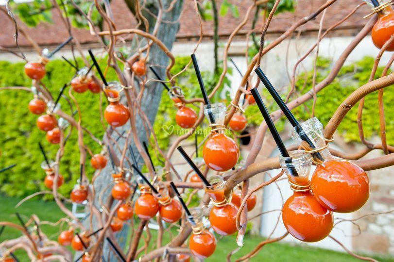 L'arbre à gazpacho