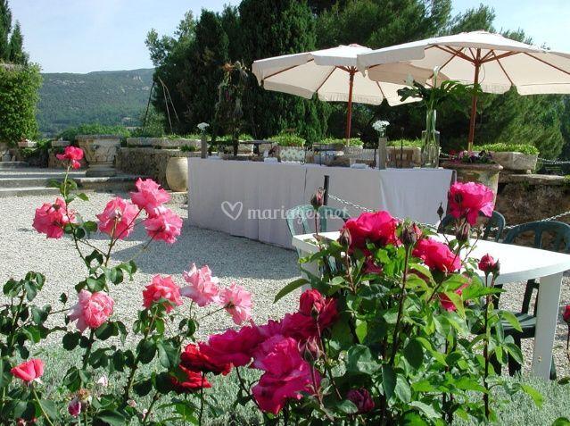 Terrasse fleurie...