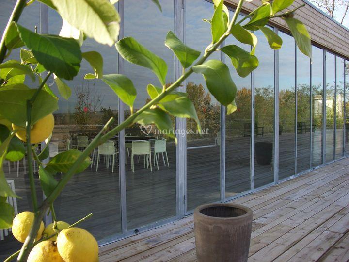 L'Orangerie et sa terrasse