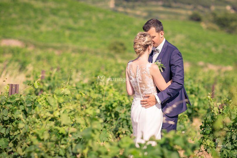 Au coeur des vignes