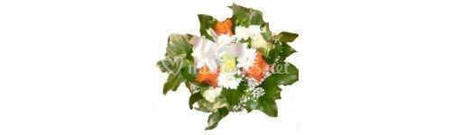 Bouquet de la vierge