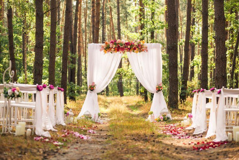 Mariage théme forêt