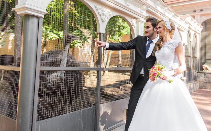Mariage théme zoo