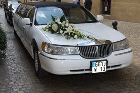 Palace Limousine