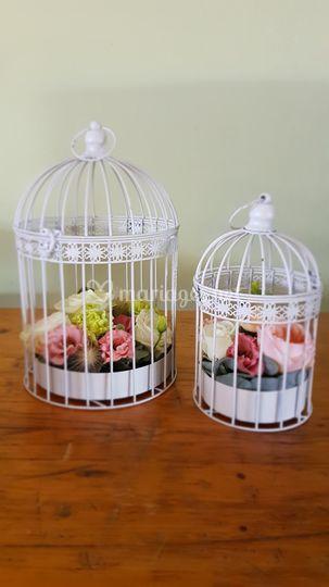 Mariage C&P - Cages à oiseaux