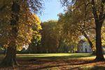 Le parc à l'automne