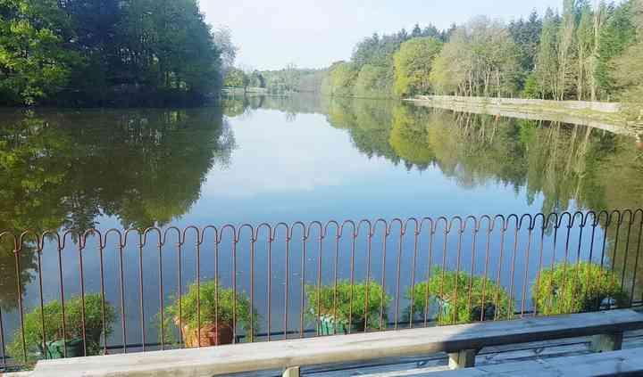 La vue de l'étang