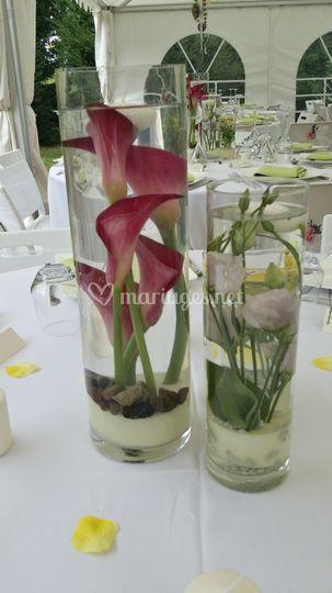 Trio vases eau champêtre