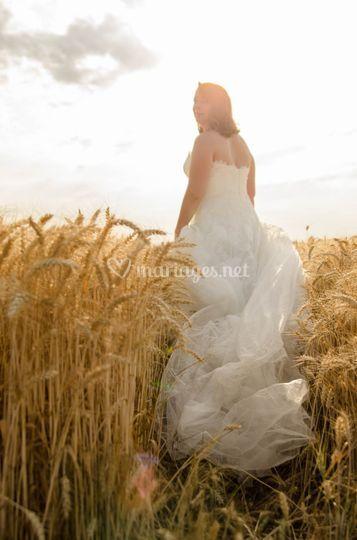 Mariée séances champs