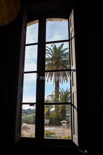 Le Palmier de Brignac