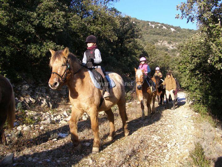Les activités : équitation