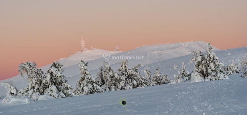 Mariage d'hivers/ Mt Ventoux