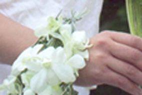 Méléder Fleurs