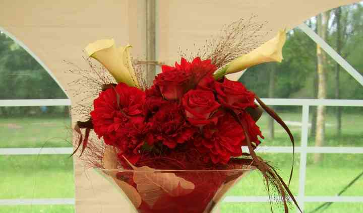 Raconte Moi Une Fleur