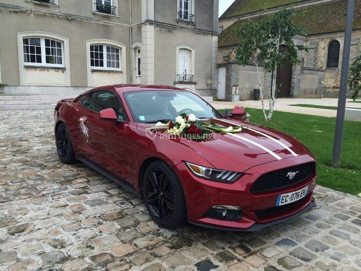 Location Mustang 11