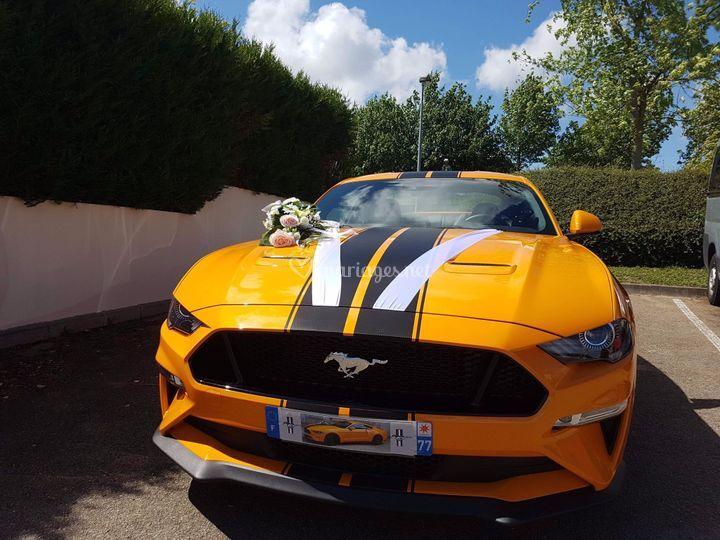 Location Mustang 45