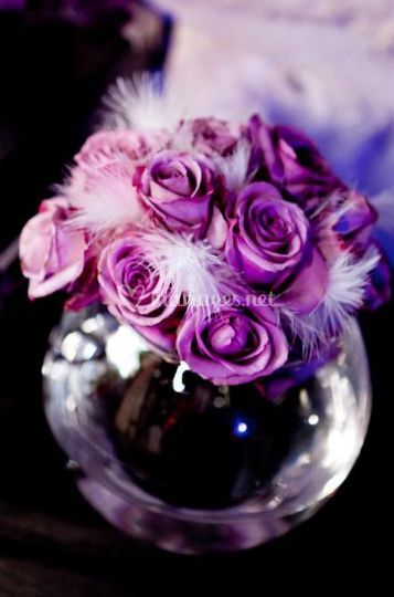 Roses violettes