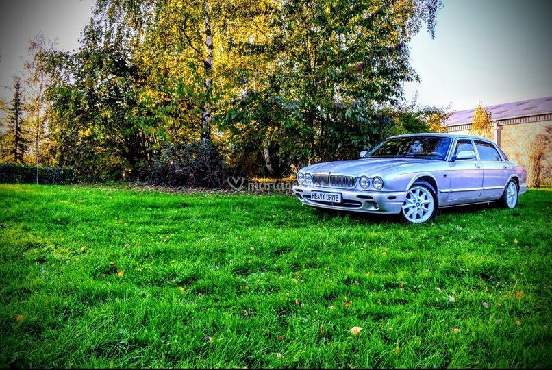 Jaguar XJ8 Collection